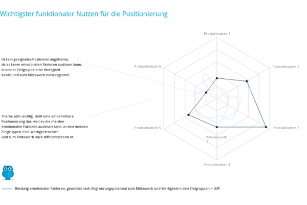 Positionierungsanalyse nach der Markenpuls Methodik: Marktpositionierung - USP - unique selling proposition - das einzigartige Nutzenversprechen - Marketingstrategie - Marketingkonzept, Branding
