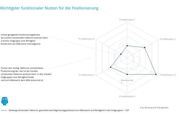 Ergebnis Positionierungsanalyse zur Positionierung auf Nutzenebene - einzigartiges Nutzenversprechen - Unique Selling Proposition ( USP ) - Produktnutzen nach Markenpuls Management